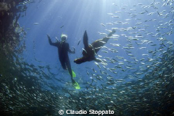 snorkeling by Claudio Stoppato 